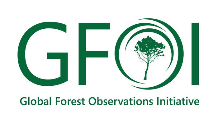 global-forest-observations-initiatives